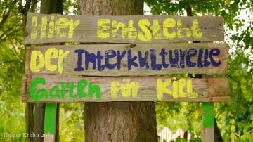Interkultureller Garten - 5049