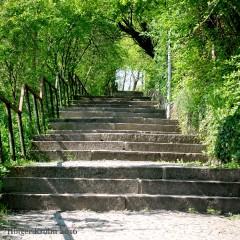 Treppe - 9215